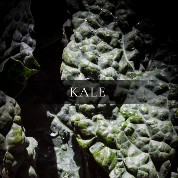 ingredients-kale
