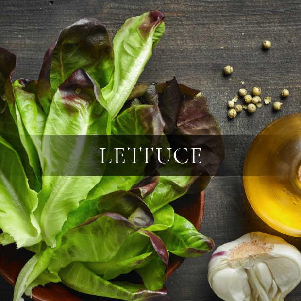ingredients-lettuce