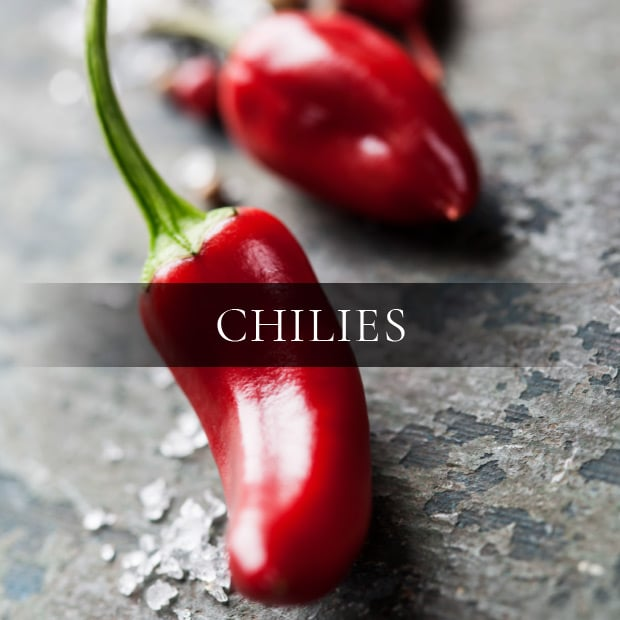 ingredients-chilies