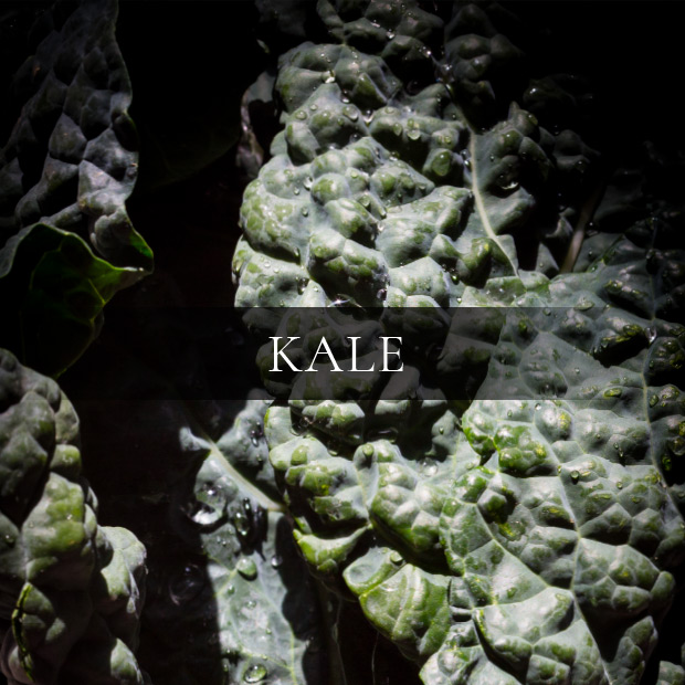 ingredients-kale